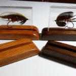 Oak and Walnut Display